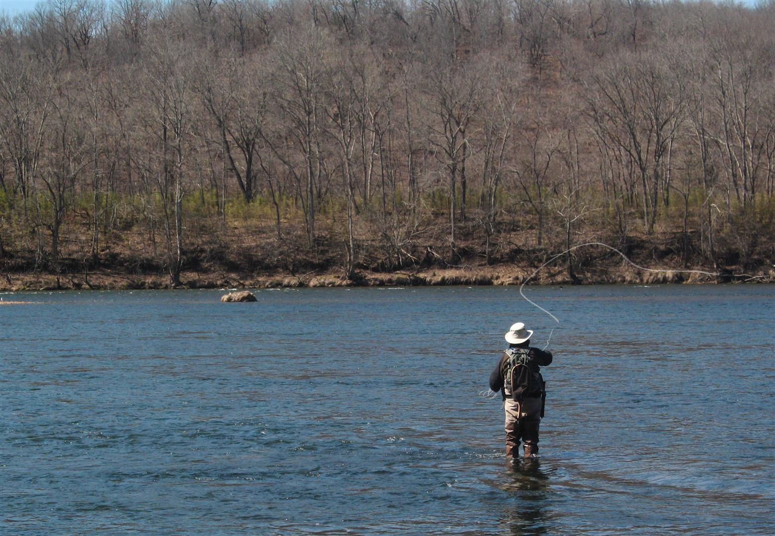 White river fishing report ozarkenglishman fly casting for White river fishing